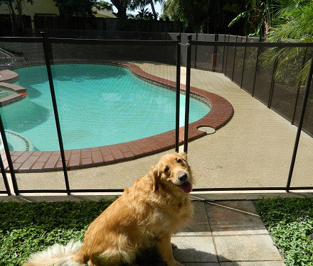 pool safety mesh pet fence installations in San Ramon, CA